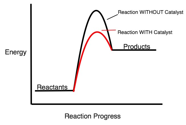 Activation Energy & Change. We all, to some extent, have an idea ...